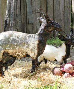 recycled metal goats