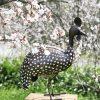 recycled metal guinea fowl