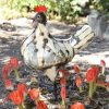 recycled metal hen